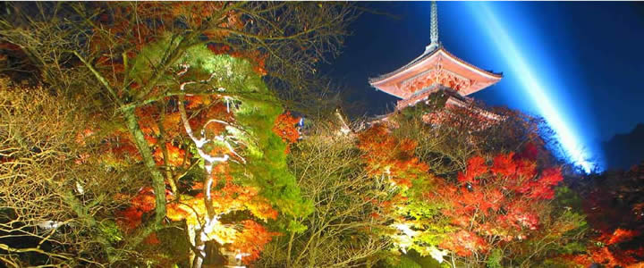 KIYOMIZUDERA TEMPLE NIGHT VIEW bus aubway